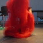 Kunstigel 2013 014 Dokumentation